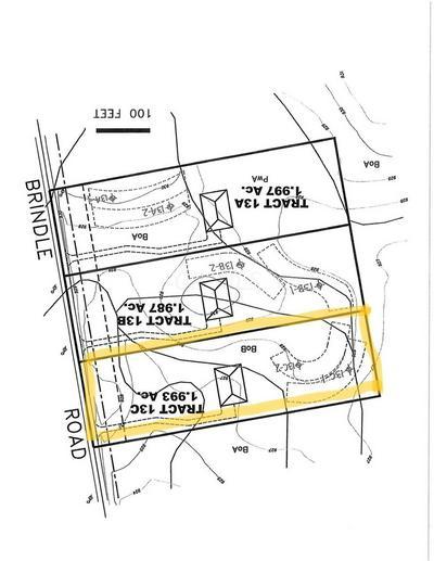 0 BRINDLE ROAD TRACT 13C, OSTRANDER, OH 43061 - Photo 1