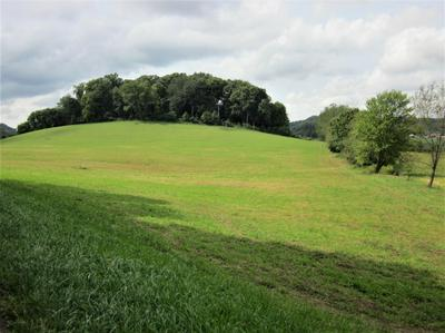 0 COUNTRY CLUB SW ROAD # LOT 1, Lancaster, OH 43130 - Photo 2