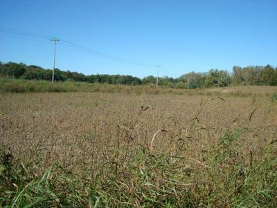 LOT A SULPHUR SPRING, CHILLICOTHE, OH 45601 - Photo 1