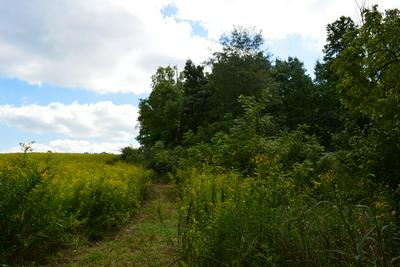 0 GRAY ROAD, Cable, OH 43009 - Photo 2