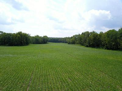 0 WALNUT CREEK ROAD, Greenfield, OH 45123 - Photo 1