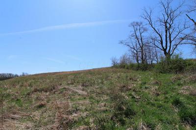 0 WORTHING RD, Kimbolton, OH 43749 - Photo 2