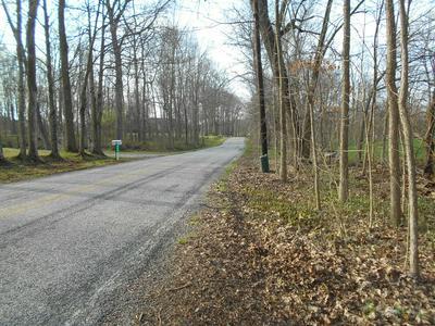 0 RIVER ROAD, OSTRANDER, OH 43061 - Photo 2