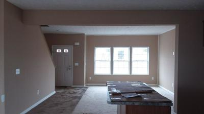 314 GREEN ACRES DRIVE 259, JOHNSTOWN, OH 43031 - Photo 2