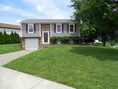 1803 MAROON DR, Powell, OH 43065 - Photo 2