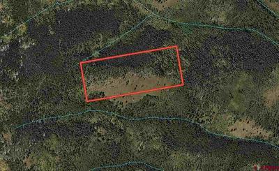 TBD CR 763, Gunnison, CO 81230 - Photo 2