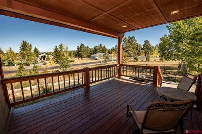 119 GLEN EATON DR, Pagosa Springs, CO 81147 - Photo 2