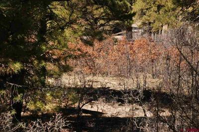 48 MASTERS CIR, Pagosa Springs, CO 81147 - Photo 2