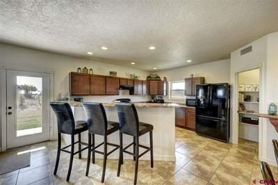 75 SILVER HILLS RD, Bayfield, CO 81122 - Photo 2