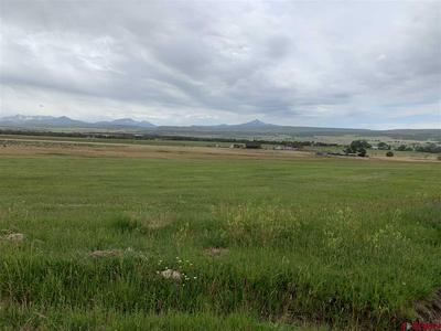 TBD 44ZN, Norwood, CO 81423 - Photo 2