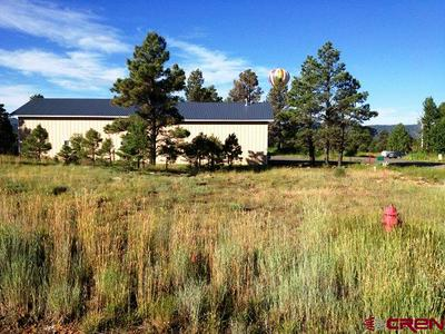 263 PARK AVE, Pagosa Springs, CO 81147 - Photo 2
