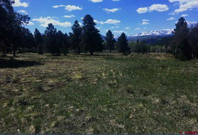 TRACT A1 BROWN RANCH ROAD, Placerville, CO 81430 - Photo 1