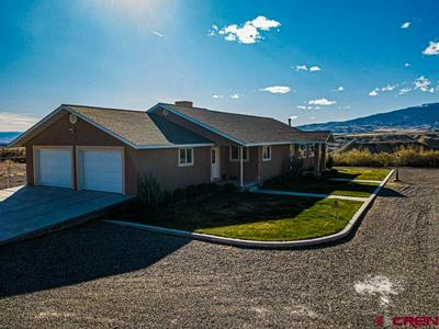 11309 RUNNING DEER RD, Eckert, CO 81418 - Photo 2