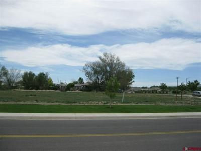 TBD VALLEY VIEW DR - LOT 3, Delta, CO 81416 - Photo 1