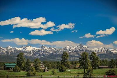 464 DICHOSO ST, Pagosa Springs, CO 81147 - Photo 2