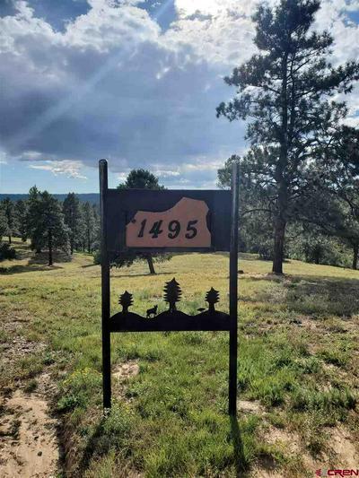 1495 CHERRY GULCH RD, Durango, CO 81301 - Photo 2