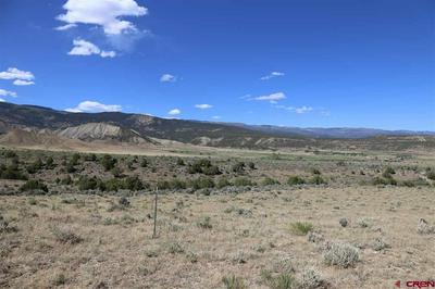 PARCEL 5 OAK CREEK ROAD, Eckert, CO 81418 - Photo 2