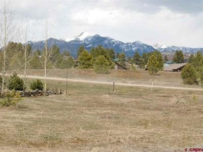 106 SADDLE CIR, Pagosa Springs, CO 81147 - Photo 1