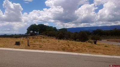 725 SE PINE ST, Cedaredge, CO 81413 - Photo 1