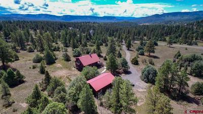 3190 MEADOWS DR, Pagosa Springs, CO 81147 - Photo 1