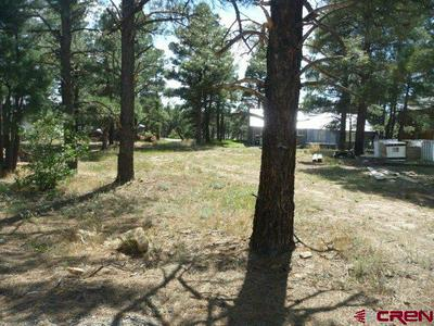 29 ROSEWOOD CT, Pagosa Springs, CO 81147 - Photo 2