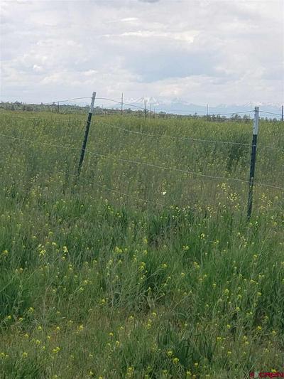 10 V44 ROAD, Norwood, CO 81423 - Photo 2