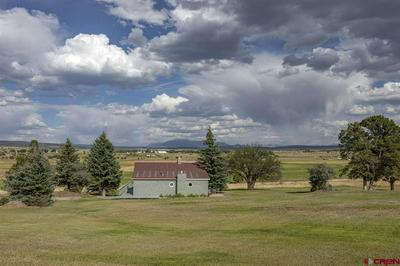 1605 COUNTY ROAD Z42, Norwood, CO 81423 - Photo 1
