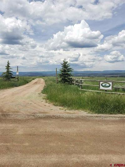 10 V44 ROAD, Norwood, CO 81423 - Photo 1