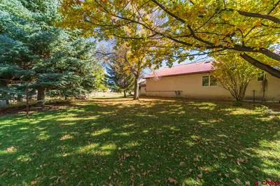 15250 6000 RD, Montrose, CO 81403 - Photo 2