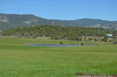 2809 HWY 151, IGNACIO, CO 81137 - Photo 1