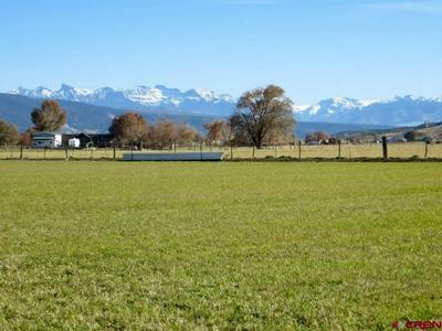 TBD HWY 550 SOUTH, Montrose, CO 81403 - Photo 1