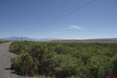 TBD COUGAR MOUNTAIN ROAD, Hotchkiss, CO 81416 - Photo 1