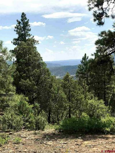 TBD PIT COURT, Pagosa Springs, CO 81147 - Photo 2