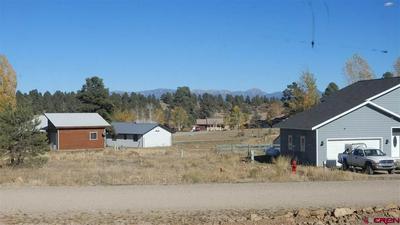 27 PIONEER CT, Pagosa Springs, CO 81147 - Photo 2
