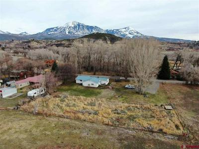470 STAHL RD, PAONIA, CO 81428 - Photo 1