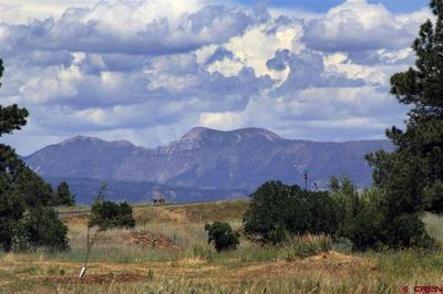 810 LAKESIDE DR, Pagosa Springs, CO 81147 - Photo 1
