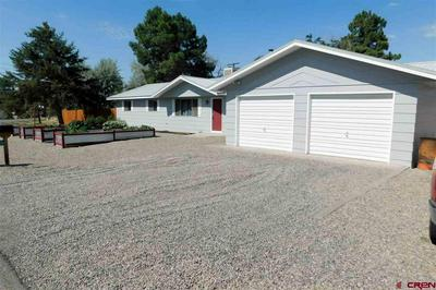 13165 ORCHARD AVE, Eckert, CO 81418 - Photo 2