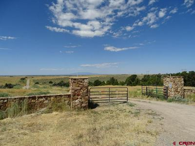 TBD COUNTY ROAD 17.5, PLEASANT VIEW, CO 81331 - Photo 2