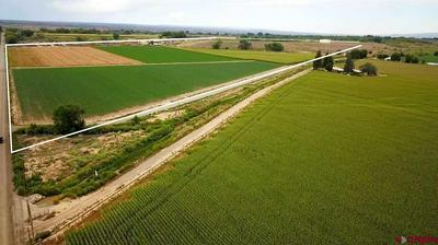 TBD 5400 ROAD, Olathe, CO 81425 - Photo 2