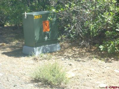 577 GINGER CIR, Pagosa Springs, CO 81147 - Photo 2