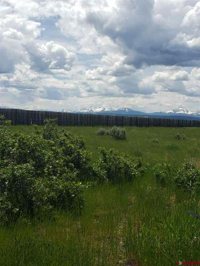 9 V44 ROAD E, Norwood, CO 81423 - Photo 2