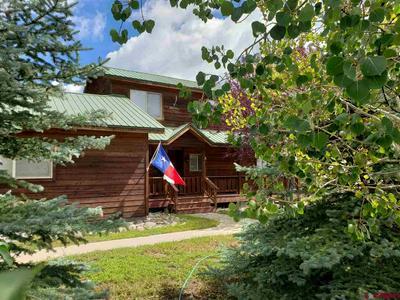 311 FALCON PL, Pagosa Springs, CO 81147 - Photo 2