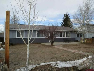 2809 COUNTY ROAD 38, GUNNISON, CO 81230 - Photo 1