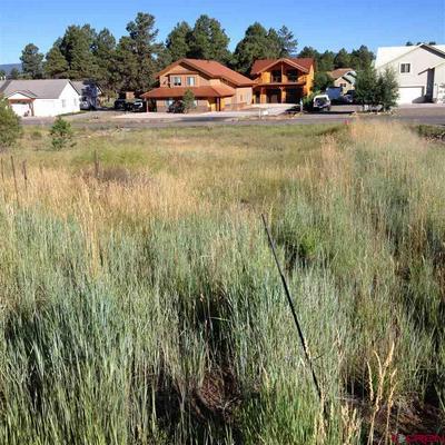 263 PARK AVE, Pagosa Springs, CO 81147 - Photo 1