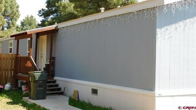 145 BONANZA AVE, Pagosa Springs, CO 81147 - Photo 2