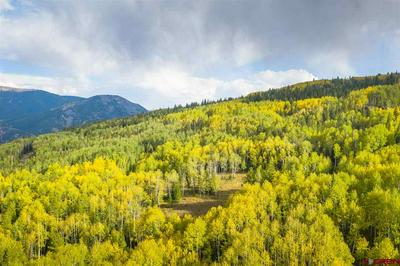 493 WHITE BUFFALO TRL, Crested Butte, CO 81224 - Photo 2