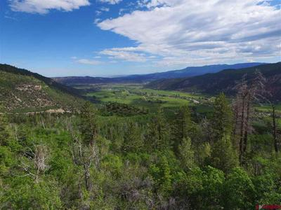 LOT 16 TIMBER ROAD, Ridgway, CO 81432 - Photo 1