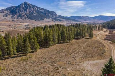 890 JOURNEYS END RD, Crested Butte, CO 81224 - Photo 1