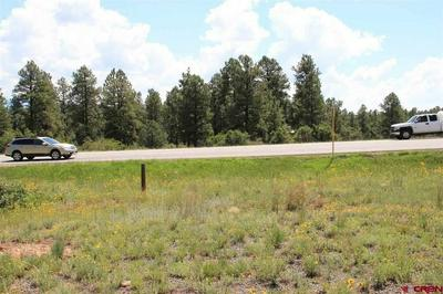 X W HWY 160, PAGOSA SPRINGS, CO 81147 - Photo 2