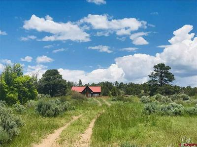 2370 COUNTY ROAD 122, HESPERUS, CO 81326 - Photo 2